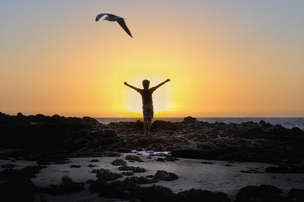 日々の疲れを癒すよい勤労感謝の日にしよう!